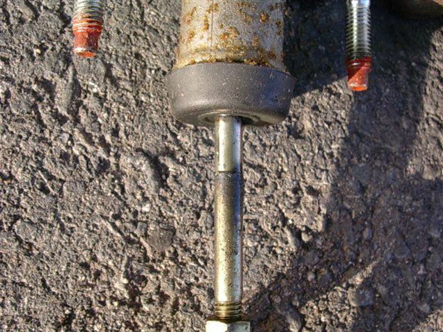 20060307-2.jpg